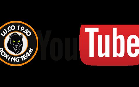 youtube-pugilatobovisa